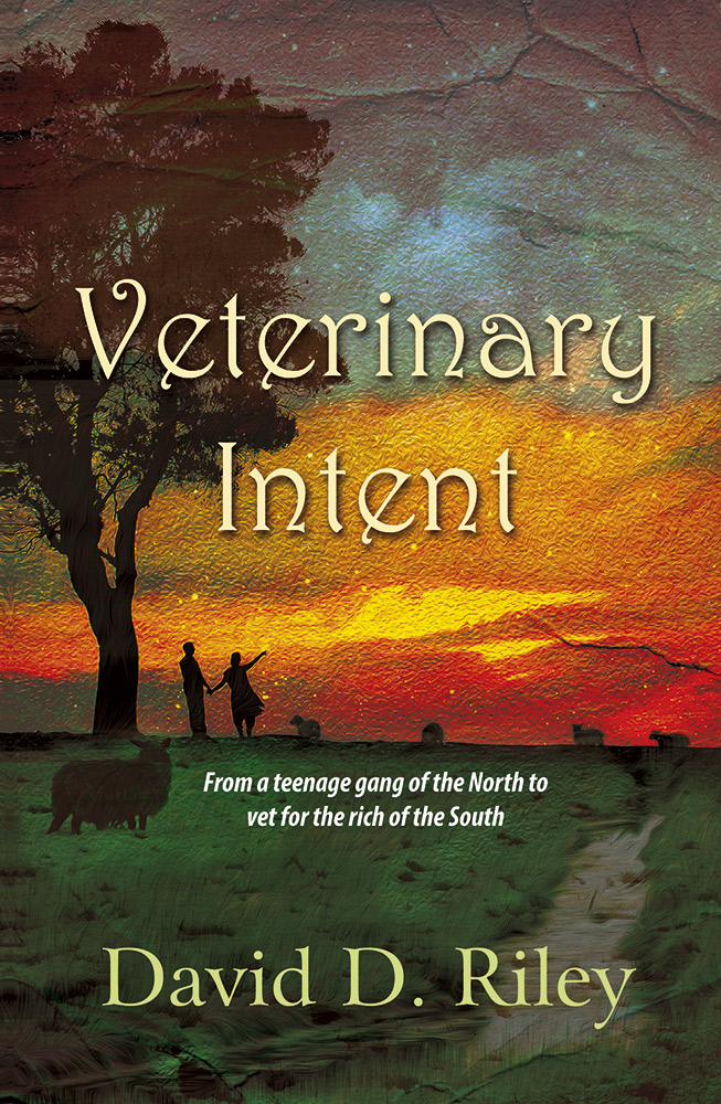 Good Book Cover Layout ~ Veterinary intent book cover design g good