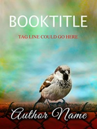 Little Sparrow Book Cover